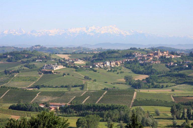 Monferrato-panorama-vigneti