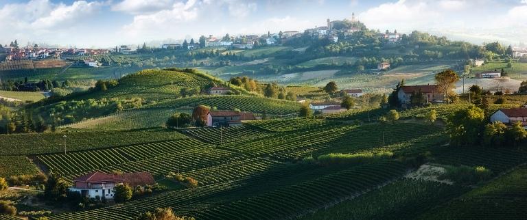 Monferrato-panorama-colline